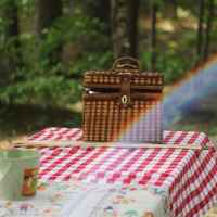 A Brief History of the Picnic