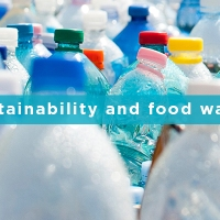 Sustainability and Food Waste